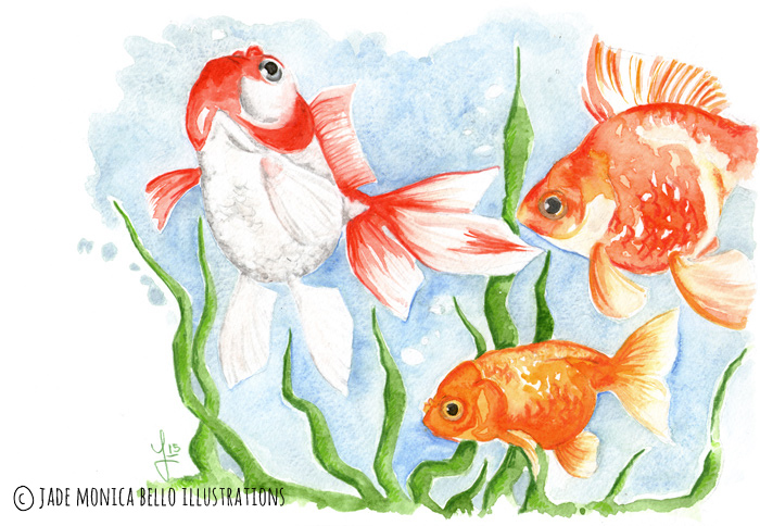 Company, animals, illustration, vegan, vegan art, animal rights, goldfish