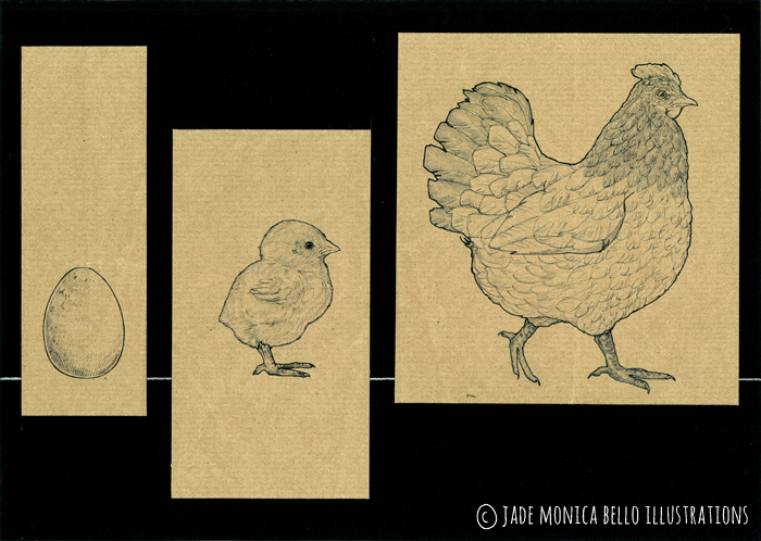 Circolo Vizio-so - pt.1 soggetti, animals, vegan, vegan art, animal rights, speciesism, egg, chick, hen