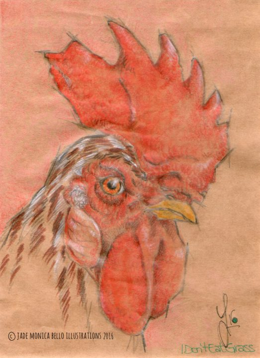 King Rooster, animals, illustration, vegan, vegan art, animal rights